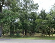 Lot 268 Bonnyneck Dr., Georgetown image