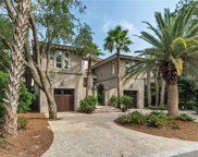 18 Grey Widgeon Road, Hilton Head Island image