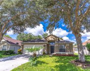88 Pine Forest Place, Apopka image