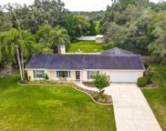2501 Ayers Hill Court, Lutz image