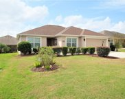 2954 Silk Tree Terrace, The Villages image
