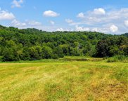 Tract 6 Marble Hill Rd, Friendsville image