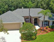 3313 Westmoreland Drive, Tampa image
