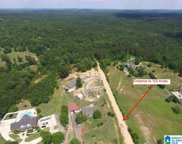 Co Rd 12 Unit 103 Acres, Odenville image