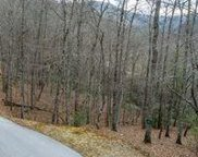 Lot 166 Trout Lily Ln, Tuckasegee image