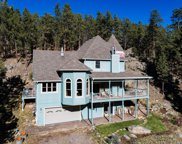 29606 Larkspur, Evergreen image