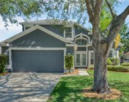 459 Fern Meadow Loop, Ocoee image