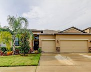 13407 White Sapphire Road, Riverview image
