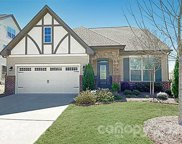 17511 Austins Creek  Drive, Charlotte image