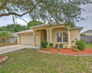 11736 Lynmoor Drive, Riverview image