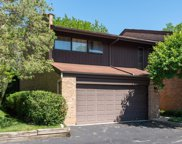 1724 Wildberry Drive Unit F, Glenview image