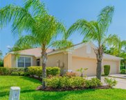 11596 Captiva Kay Drive, Riverview image