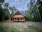 2205 Opal Lake Road, Gaylord image
