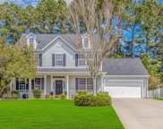 388 Blackberry Ln., Myrtle Beach image