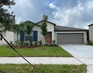 4194 Salt Springs Lane, Lakeland image