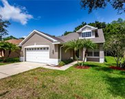 4841 Ridgemoor Circle, Palm Harbor image