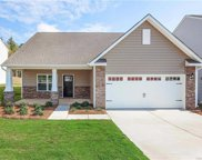679  Cape Fear Street, Fort Mill image