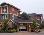 11461 236 Street Unit 44, Maple Ridge image