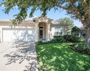 11419 Turtle Dove Place, New Port Richey image