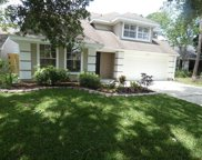 14510 Clifty Court, Tampa image