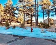 1235 Cottontail Trail, Woodland Park image