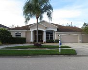 4309 Waterford Landing Drive, Lutz image