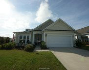 418 Waterlily Way, Summerville image