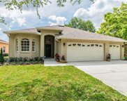 11022 Lynn Lake Circle, Tampa image