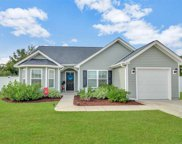 352 Cherry Buck Trail, Conway image
