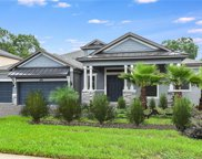 13601 Liana Rose Way, Tampa image