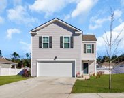 3177 Holly Loop, Conway image