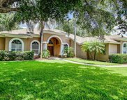 2802 Winding Trail Drive, Valrico image