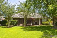 14490 Lake Crossing Dr, Gonzales image