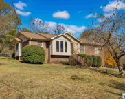 113 Hunters Point Cir, Hoover image
