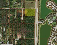 Immokalee Rd, Naples image