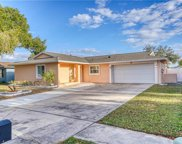 10407 Out Island Drive, Tampa image