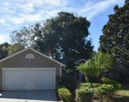1502 Country Villa Court, Apopka image