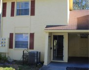 7607 Pasa Dobles Court, Tampa image