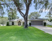 2639 Waterview Drive, Eustis image