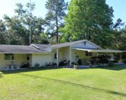 4025 CR 249, Live Oak image