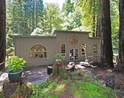 2589 Bohemian Highway, Occidental image