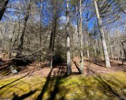 Lot N55 Chimney Top Tr., Cashiers image