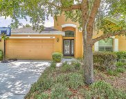 11447 Pennsville Court, New Port Richey image