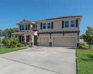 11812 Newberry Grove Loop, Riverview image