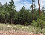 15 County Road 2083, Alpine image