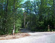 9 Twisted Oak, Glen Arbor image
