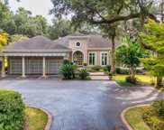 734 Wallace Pate Dr., Georgetown image