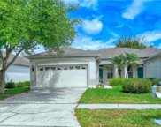 30127 Emmetts Court, Wesley Chapel image