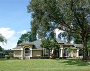 11407 Willow Gardens Drive, Windermere image