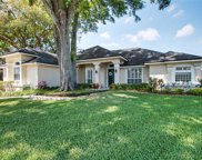 11417 Willow Stowe Lane, Windermere image